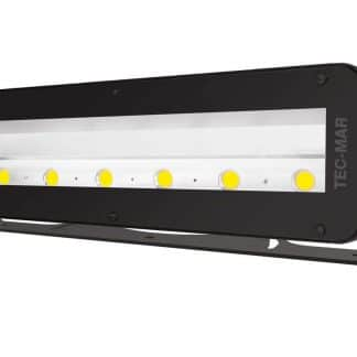 LED 8056 MAXI-LORD AR